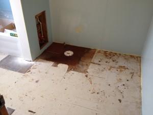 New Subfloor & Flange - Kitchen, Bathroom, Laundry Remodel - Hicksville, Ohio